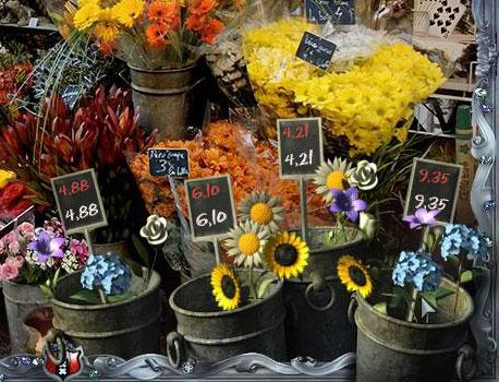 Die Lösung vom Blumen-Puzzle